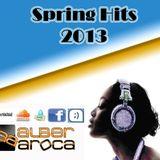 ALBER AROCA . SPRING HITS 2013