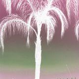 DJTRICKY 100 (1 DJ...10 YEARS....100 MIXES)  Decade Mix *Think Tiesto style trance