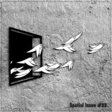 Feelin' Fly (Spatial Issue #22)