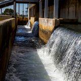 [EMISSION COMPLETE] Kikeriki #5 L'eau du robinet