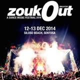 STEVE AOKI - LIVE @ ZOUKOUT SINGAPORE - PIONEER DJ 20TH ANNIVERSARY - 12/12/2014