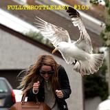 Fullthrottlelazy #103: Caulk in a Mosh