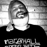 AYLI Podcast #53 - Marshall Applewhite How To Kill Records