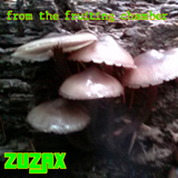From The Fruiting Chamber