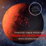 Anton Borin - Cosmos Vibes Podcast #12