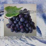 #022 RAFA - Purple Is A Wave