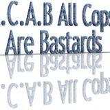 15.Decembar.2012.   A.C.A.B.
