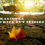 Chill Out Session 44