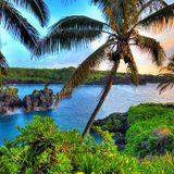 Prog 92 Moana's Hawaiians