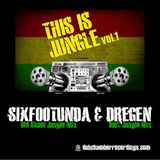 This is Jungle vol 1 - SixFootUnda and Dregen
