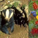 People pick and choose wildlife