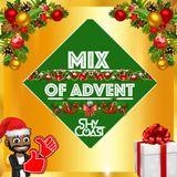 Shy-Coast - Mix Of Advent #7 (Moombahton-Reggaeton) 2016