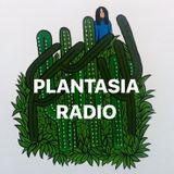 Plantasia - India