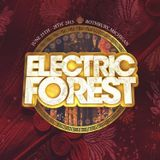 ELECTRIC FOREST 2015 ENTRY