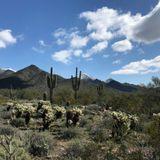 Franck Matthews – Take A Hike Vol 2
