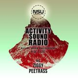 Ziggy Flow Tek & Peetrass - Nature Sound Underground Showcase #034 on activitysound.com