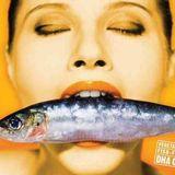 dj.maniax fish oil mix archives