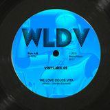 WLDV - Vinylmix 09
