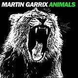 Martin Garrix - Animals (Original Mix) w/ Martin Garrix - Animals (Milk N Cookies Festival Remix)