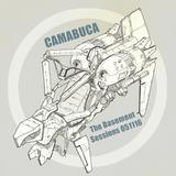 The Basement Sessions 051116 by Camabuca aka John Valavanis