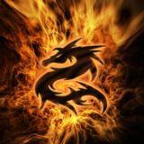 Vij-Transerfer Fire Mix 2016