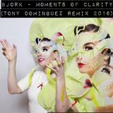 Bjork - Moments Of Clarity (Tony Dominguez Remix 2016)