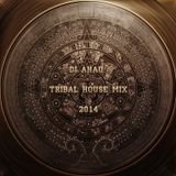 dj AHAU - Tribal House Mix 2014
