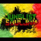 Reggae Reborn Mix