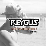 Reygus Homepa Collection 2