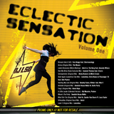 Dj L.S.D presents Eclectic Sensation Vol 1