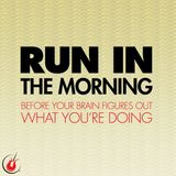 The Morning Run 4
