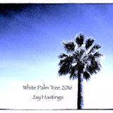 Jay Hastings - White Palm Tree 2016 - Uplifting Progressive Summer Session