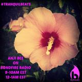 Chillcast Guest DJ for Tranquilbeats on Bondfire Radio (Part 1-5)