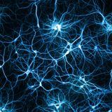 Verklatschte Synapsen 2.0