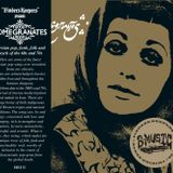 Electric Café - Welle20.de Podcast 38 - Pomegranates - A Trip to the Persian Music (2014-12-17))