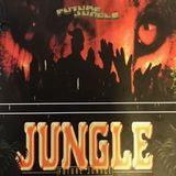 Jungle Groove Vol. 1