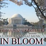 "THE MUSIC SOMMELIER -presents- ""CLASSIC WASHINGTON DC GO-GO MUSIC... IN BLOOM""  @ AURÓRA, BUDAPEST"