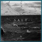 Gabriel Belmudes - Salt (The unknown sea) Autumn 2017