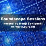 Kenji Sekiguchi - Soundscape Sessions 142 [Feb 15th 2014]