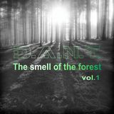 D.A.N.T.- (The smell of the forest) vol.1 liveset.