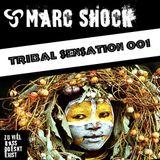 Tribal Sensation 001