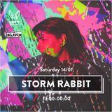 Rabbits in the Sand - Storm Edition - The Block Tel-Aviv 2017 - Ray Harel