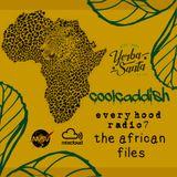 coolcaddish-every hood radio 7 (african files)