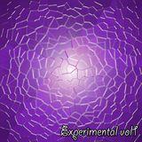 Experimental vol1