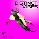 Distinct Vibes #1 Part Two