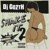 DJ GOZTH - SHAKE IT 2