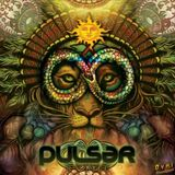 Pulsar - 8th Life Album [Full Album] (OVNI Records)