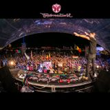 Regi - Live At Tomorrowworld 2015