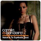 Voice In To Symbolic Soul - III (Techno)