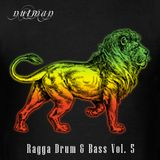 Ragga Drum & Bass Volume 5